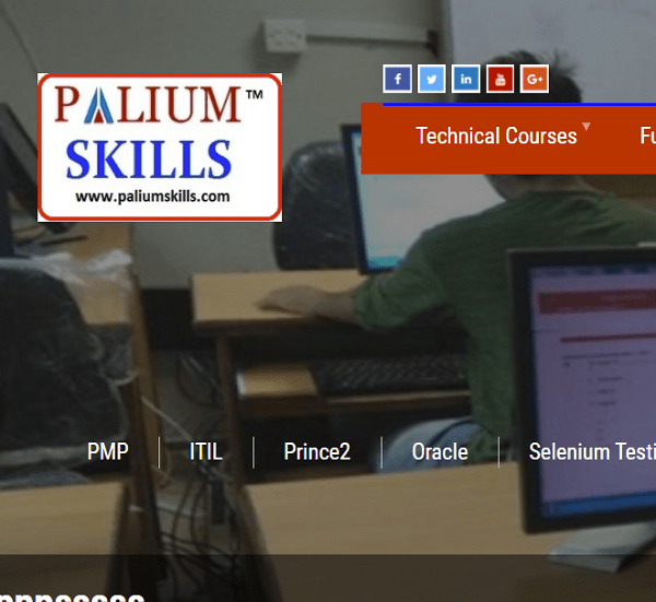 Palium Training