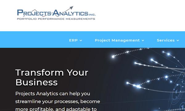 Projects Analytics Primavera Training